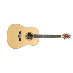 Peavey DW-1 Acoustic NAT